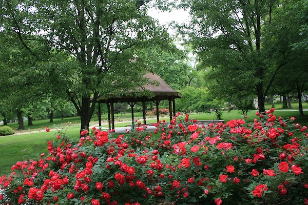 Shelter_Gazebo_AP_May15_11.JPG